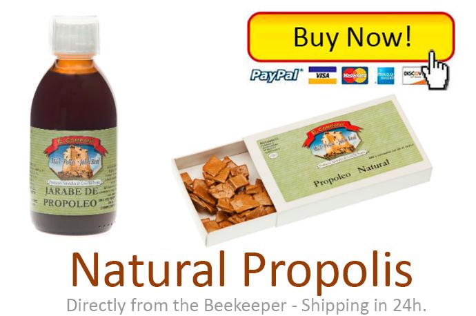 buy-natural-propolis-big