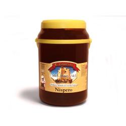 Miel de Níspero - Bote 2 kg