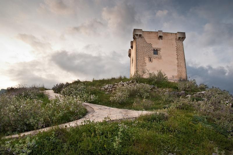Miel de Cocentaina - Alicante