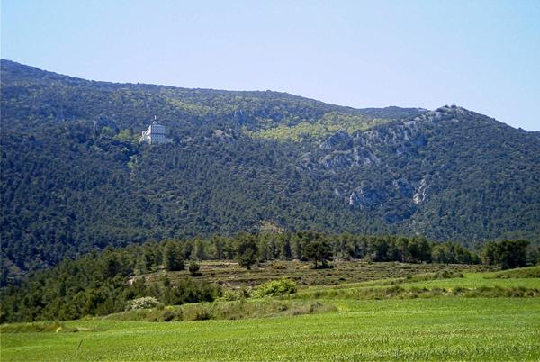 Miel de Alicante - Natural